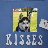 kissing-booth11