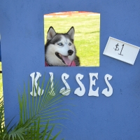 kissing-booth2