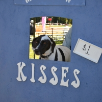 kissing-booth24