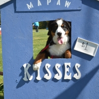 kissing-booth46