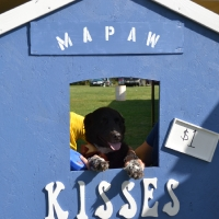 kissing-booth62
